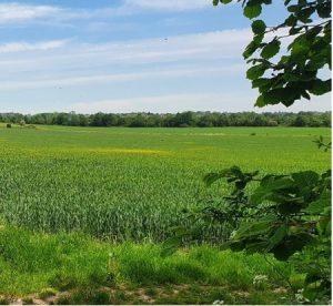Woodoaks Farm