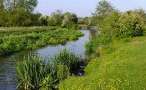 Croxley Common Moor
